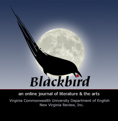 blackbird-issue